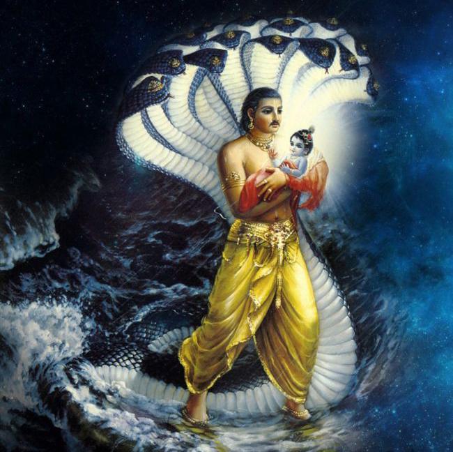 krishna vasudev copy