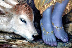 divine feet of lord krishna