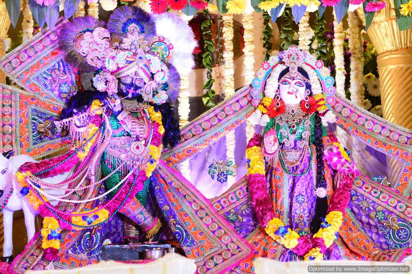 """<a href=""""/images/delhishivir/"""">Delhi Sadhna Shivir</a>"""