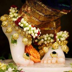 The Lotus Feet of The Lord krishna