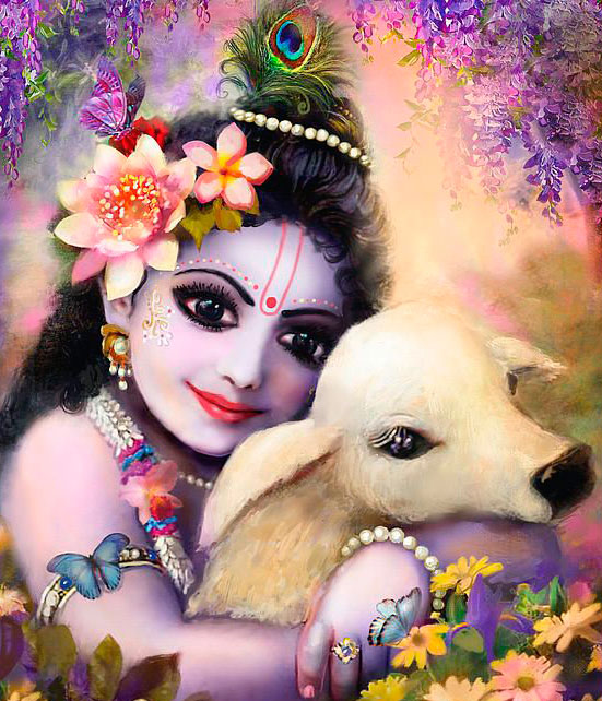 little krishna with baby cow