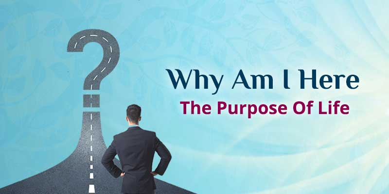 Why Am I Here- The Purpose Of Llife